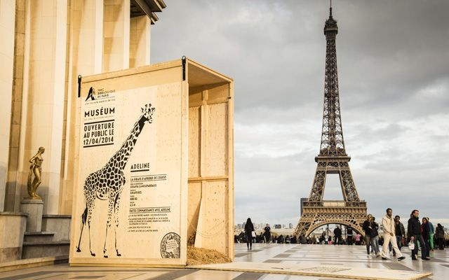 street marketing zoo paris